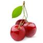 Биотор за плодове Тера Органика