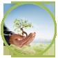 Terra-Organica-logo